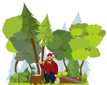 Arborist Direct Glasgow