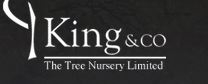 King and Co logo