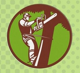 Tree Surgeon Gloucester Logo