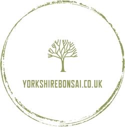 Yorkshire Bonsai Logo