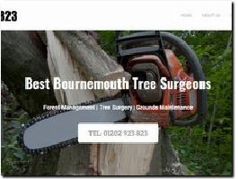 http://www.bestbournemouthtreesurgeons.co.uk website