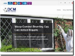 http://www.kentwaspnestremoval.co.uk/wasp-nest-removal/bromley/ website