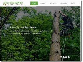 http://www.bridgewatertreeservices.co.uk website