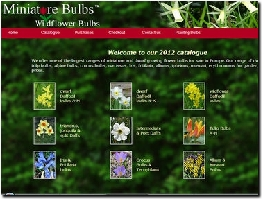 http://www.miniaturebulbs.co.uk/ website