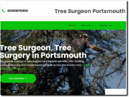 http://portsmouthtreesurgeon.com website