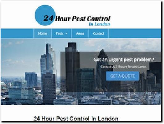 http://www.24hourpestcontrolinlondon.co.uk website
