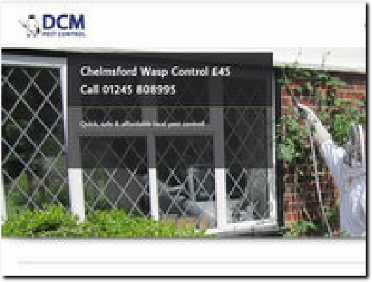 http://www.essex-wasp-nest-removal.co.uk/wasp-nest-removal-chelmsford/ website