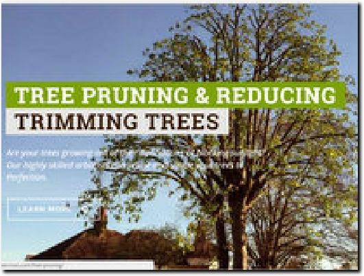 http://www.surreytreeservices.com website