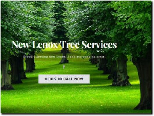 http://www.newlenoxtreeremoval.com/ website